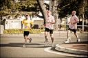 Le Marathon de Tarbes  2012