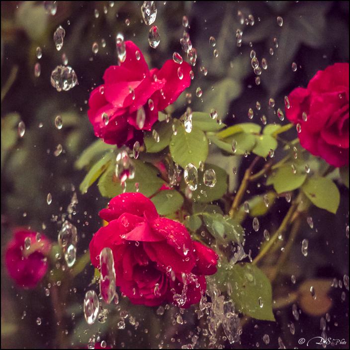 Il pleut au 16000ème 20161010092414-4069a727