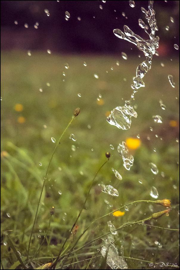Il pleut au 16000ème 20161010092430-9e1933f2