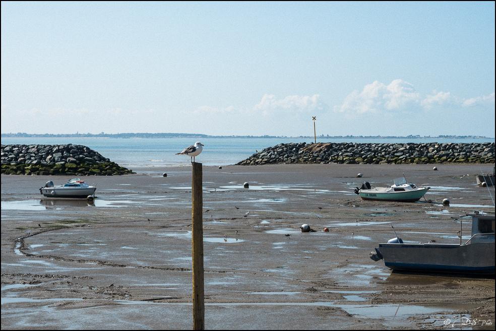 [SERIE] Flâneries photographiques : sur la côte Charentaise [+Ajouts] 20170922092713-8dd7b9e5