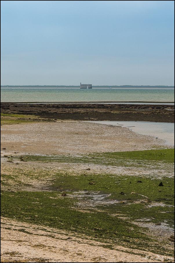 [SERIE] Flâneries photographiques : sur la côte Charentaise [+Ajouts] - Page 2 20180311134118-b2da6aa6