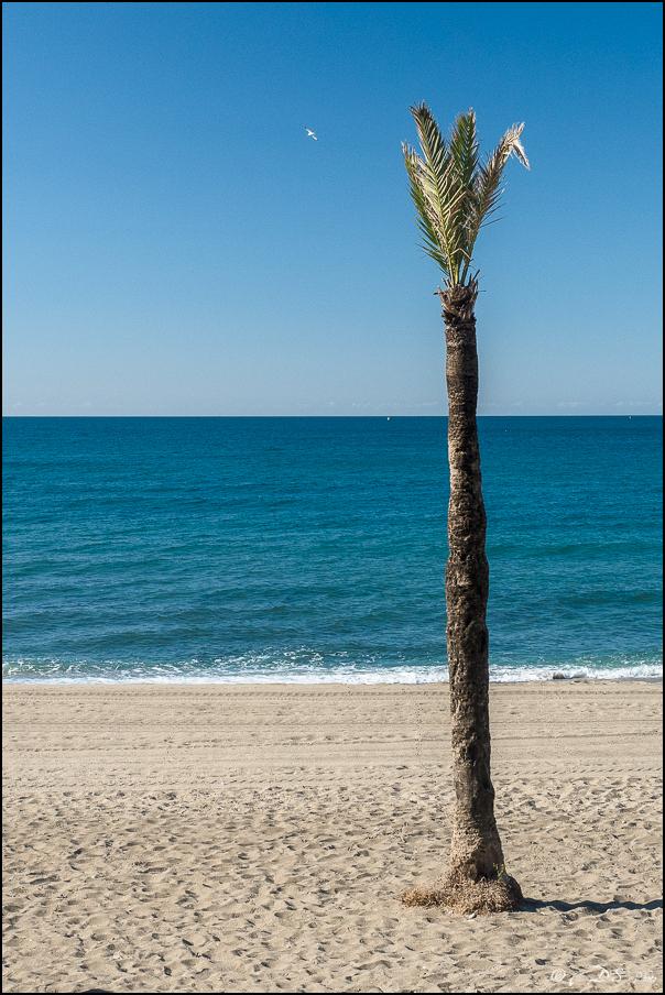 [Le Don Andalou] Road-Trip Etape 4.2 : Marbella 20180630214635-00ab138b