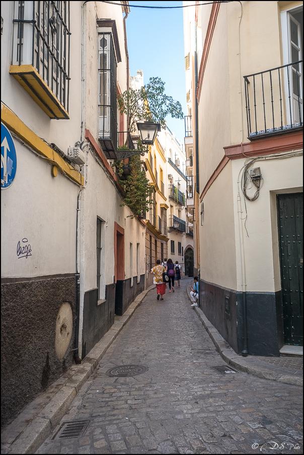 [Le Don Andalou] Road-Trip Etape 5 : Séville (Part 1) 20180801100850-d6649637