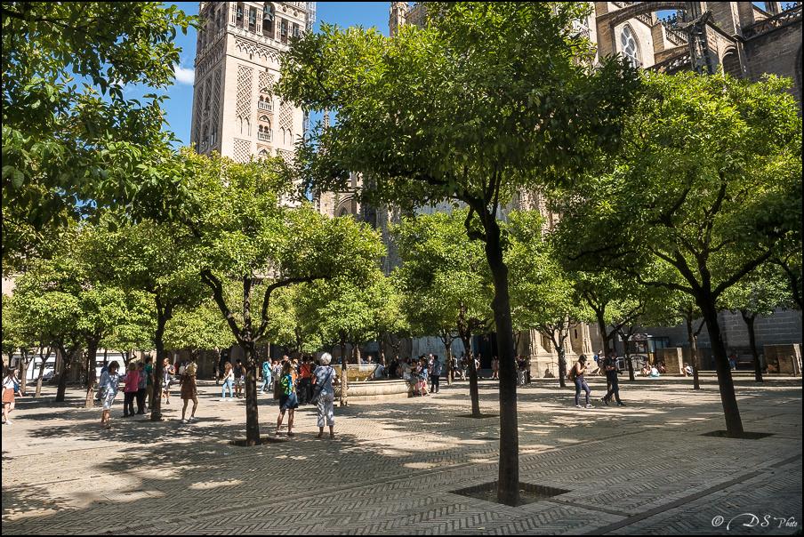 [Le Don Andalou] Road-Trip Etape 5 : Séville (Part 2) 20180801102354-ceb8c9f4