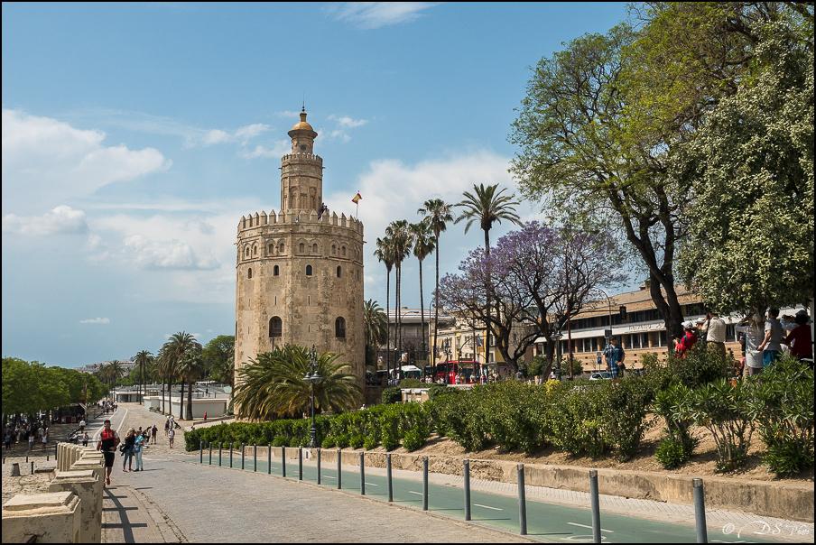 [Le Don Andalou] Road-Trip Etape 5 : Séville (Part 4) 20180802173644-deb9d5f6